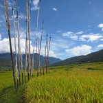 Punakha and Thimphu